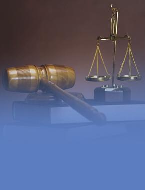 Студенты-юристы постигают основы оценки регулирующего воздействия