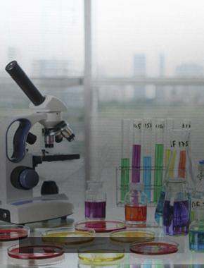 Итоги Регионального этапа X Межрегионального химического турнира в СурГУ